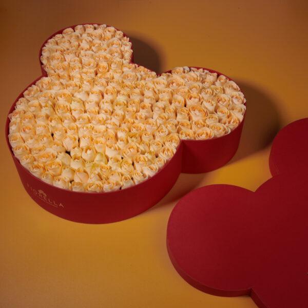 Mickey Box