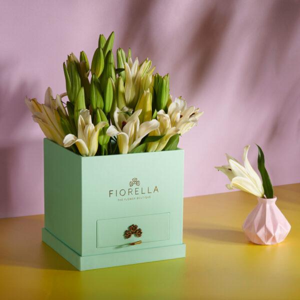Fiorella14634 copy