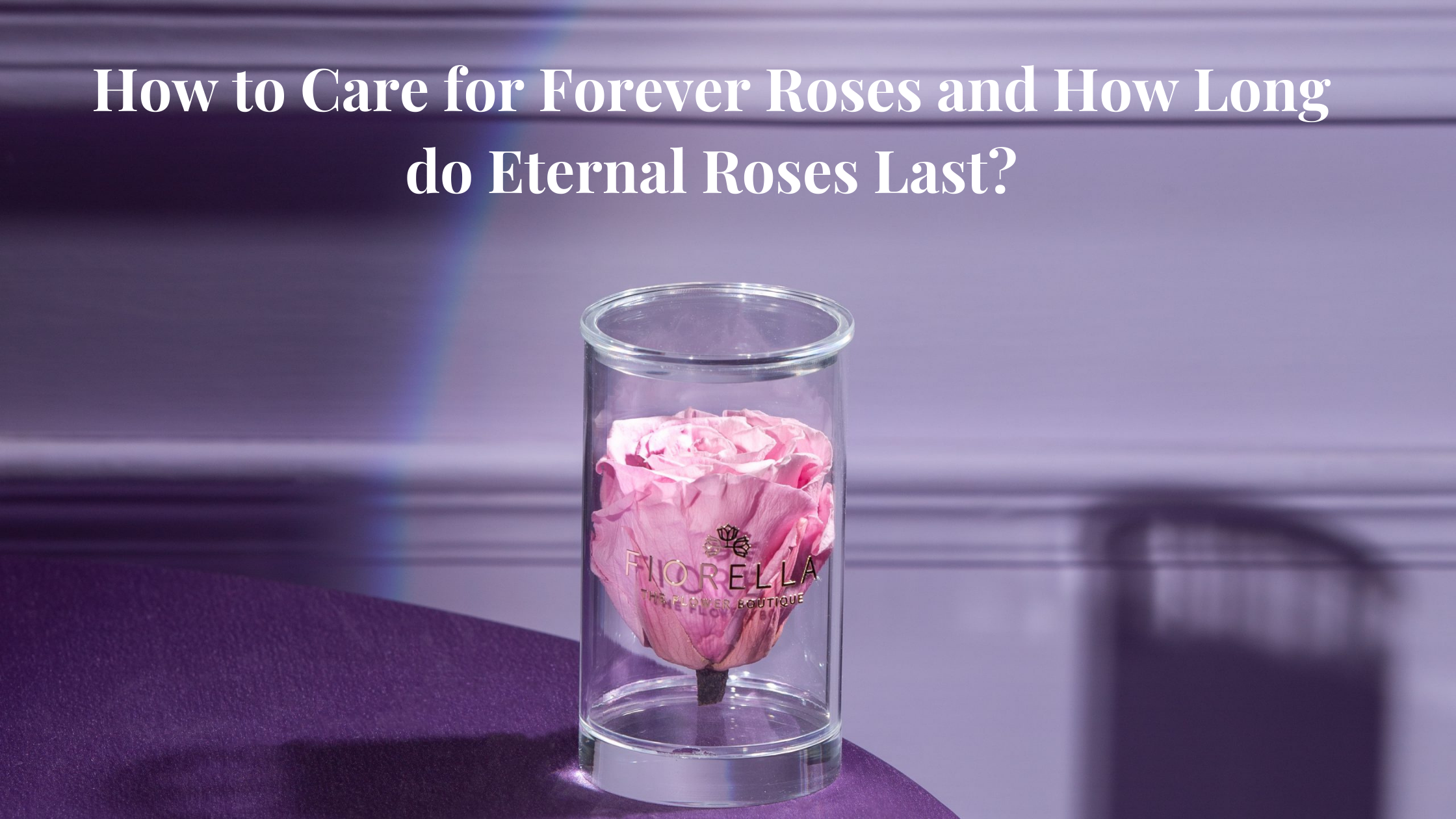 How to Care for Forever Roses and How Long do Eternal Roses Last