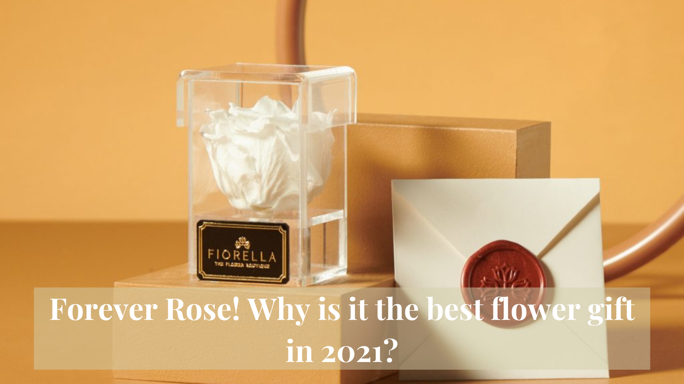 Forever Rose! Why is it the best flower gift in 2021?